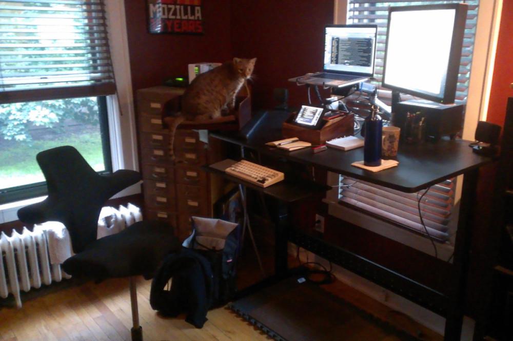 Ergonomics Standing Desk