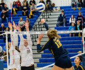 Volleyball: 2018 All-Dulles District Team Selected