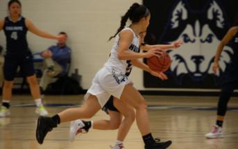 https://locosports.smugmug.com/Basketball/Girls-Basketball/Tuscarora-John-Champe-02112019/
