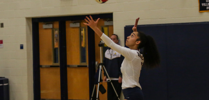 Volleyball: 2019 All-Dulles District Team Selected