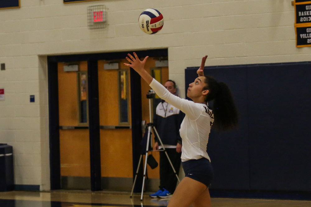 Volleyball 2019 All Dulles District Team Selected Locosports